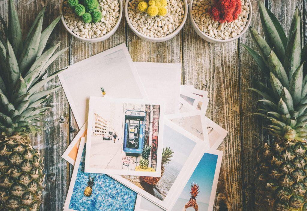Photos & cacti on table